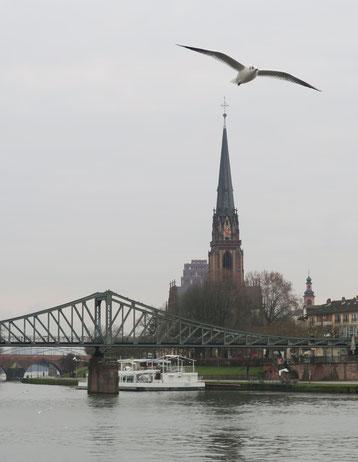 Frankfurter Möwe