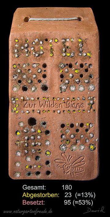 Farbig markierte Verschlußdeckel Insektenhotel Insektennisthilfe Nisthilfe gebrannter Ton terra cotta Wildbienen wildbee insect hotel nesting aid  reed
