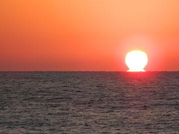 お餅Sunset!