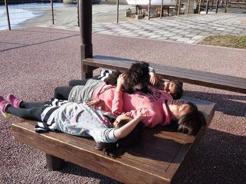 ポカポカ陽気で、1ワンコ、3ガールズもお昼寝中~~zzz