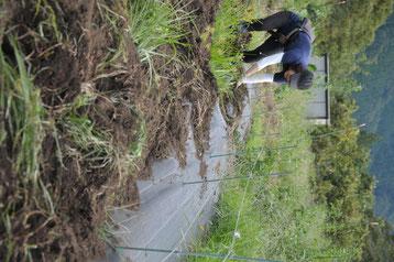 電気柵 野菜作り教室 農業体験 体験農場