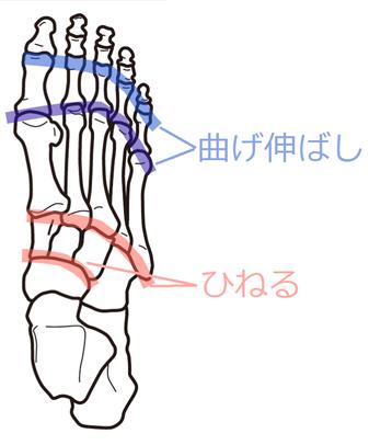 足部のストレッチ