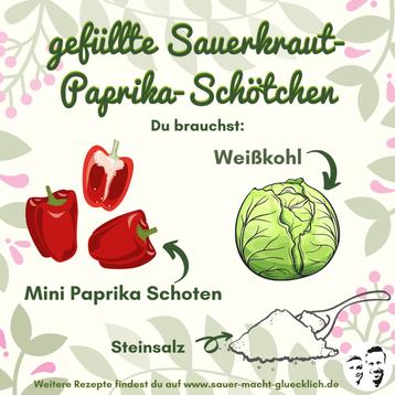 Sauerkraut-Schötchen - Milchsaure Mini-Paprika mit Sauerkraut gefüllt