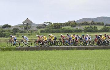 壱岐市内のコースを駆け抜ける選手たち