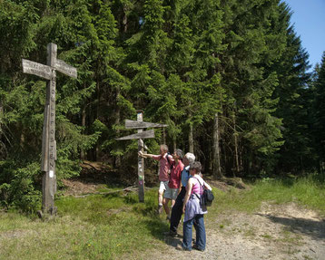 Wandern bei Büren © Touristikzentrale Paderborner Land