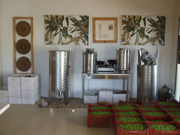 boutique huile olive