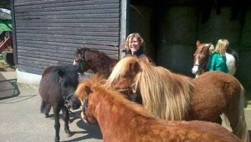 Ferienlehrgang - Ponys