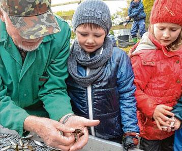 Helfer Jochen Schröder zeigt Leonie und Lukas, dass auch mal ein Krebs dabei sein kann.