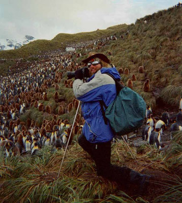 Photo:Biography. David Brandenberger in South Georgia photographing penguins.