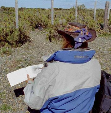 David Brandenberger in Cabo Virgenes, Argentinien, Südamerika mit Skizzenbuch
