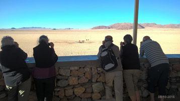 Voyage en Namibie le 08-10-2016