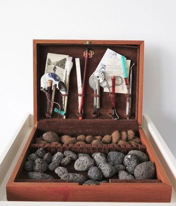 Kasten mit Sammlung verschiedener Naturobjekten und mit medizinischen Instrumenten, 2018