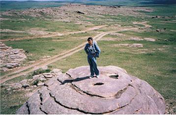 トゥルンギーンチョロー スフバートル県西端の巨大な花崗岩。背景には車の往来でできた草原の道