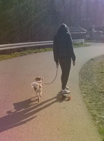 Skaten mit Hund