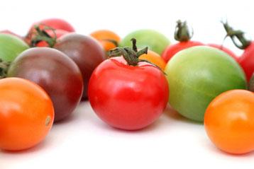 色んな種類のカラフルトマト