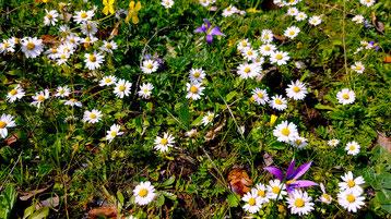Rundreise Spanien Frühling Extremadura