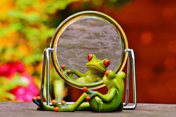 Frosch und sein Spiegelbild