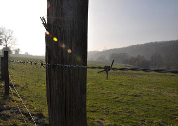 Stacheldrahtzaun vor nebliger, aber sonniger grüner Hügellandschaft