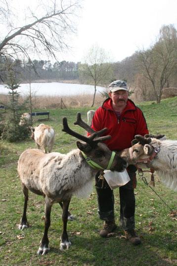 Rentierzüchter Andreas Hoffman mit eienem Rentier
