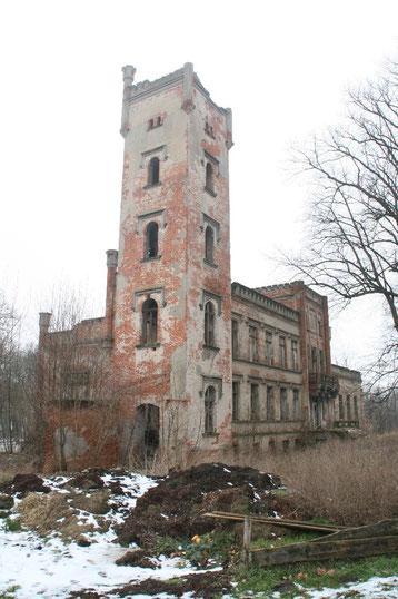 Ruine Schloss Hohen Landin