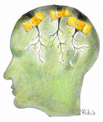 Traumatherapie, Bad Salzuflen, Trauma, EMDR, Eye-Movement-Desensitization-Reprocessing, bilateral, Augenbewegung, Shapiro, Angstzustände, PTBS, Stress, belastende Lebenserfahrungen, Blockaden, psychische Erkrankungen
