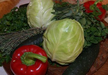 Spitzkohl,Couve coração,Heart cabbage,Gemüse,Legumes,Vegetables,Martins-Kulinarium,Carvoeiro,Algarve,Portugal