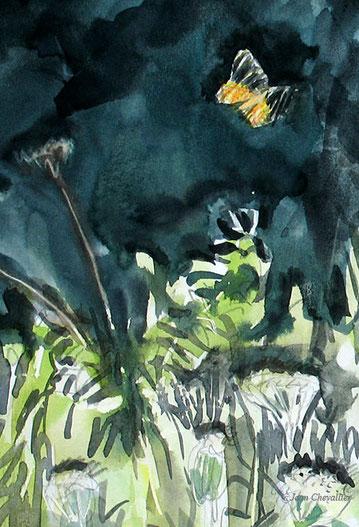 Ecaille chinée, Euplagia quadripunctaria, détail, aquarelle Jean Chevallier