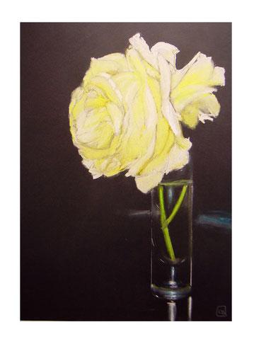 Rose,Pastellkreide,70x50 cm