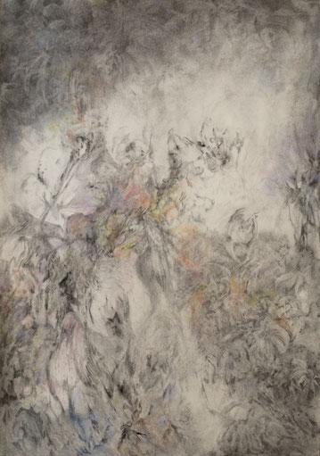 z.t. 2017. Houtskool en pastelkrijt op papier, 100x70cm.