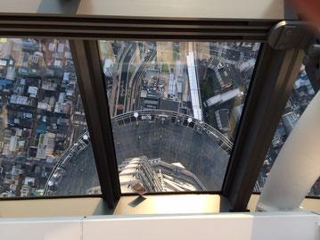 足元に見える半円が350mの展望デッキです。