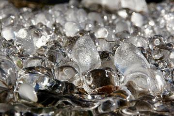 Comment lutter contre le gel avec les capteurs de rayonnement gel distribués par Agralis...