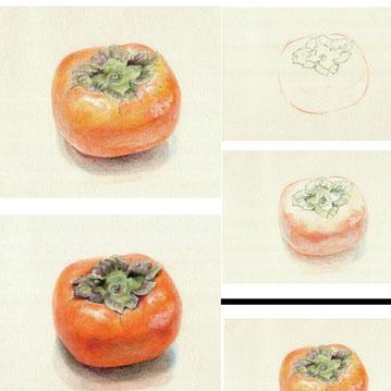 描き方プログラム・柿の色鉛筆画4ステップガイド