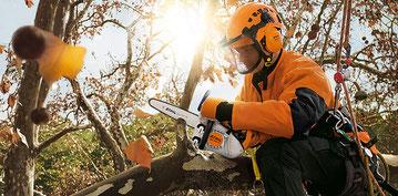 Baumpflege - Baumpflegesäge - M-Tronic - entasten