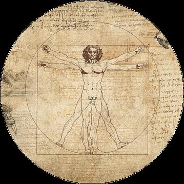 phytocorsa, médecine holistique