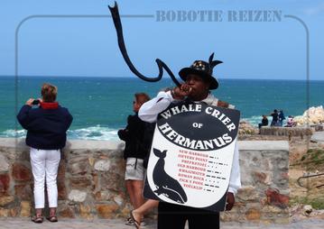 Rondreis Zuid-Afrika Safari Bobotie Reizen Whale Crier of Hermanus