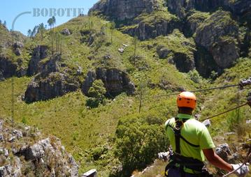 Rondreis Zuid-Afrika Safari Bobotie Reizen Cape Canopy Tour