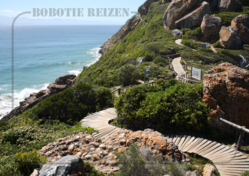 Rondreis Zuid-Afrika Safari Bobotie Reizen Robberg Nature Reserve