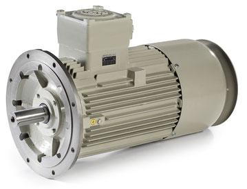 Motoren Serie PE, Serie PE - Ex-d, Serie PE - Ex-d Ex-de - ELECTRO ADDA S.p.A. - TECHTOP ADDA MOTOR GmbH