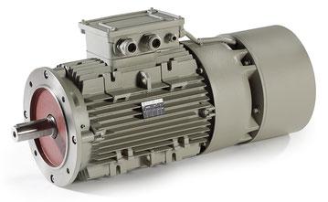Motoren Serie FE, Serie FECC, Serie FECCL - ELECTRO ADDA S.p.A. - TECHTOP ADDA MOTOR GmbH