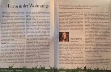 """Artikel """"Zeit"""""""