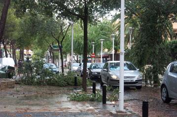 Sturmschäden in Palma de Mallorca