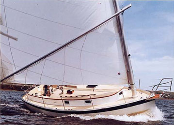 history of the american catboat - Catboot Seezunge