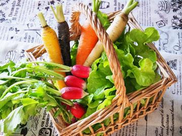 ビタミンたっぷりの新鮮な野菜