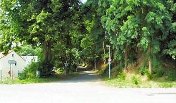 Einfahrt zum Waldstadion