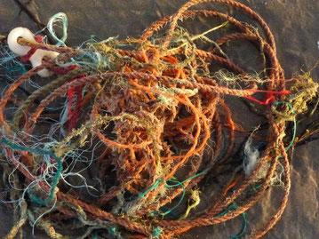 bunte Seile und Stricke, Strand, ©Claudia Dorka