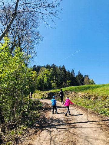 Wandern durch den Wald mit Kindern