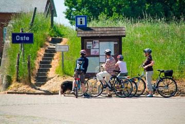 Radfahrer am Ostedeich in Oberndorf-Bentwisch