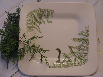 Platte: Gräser