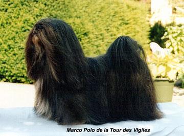 Marco Polo de la Tour des Vigiles