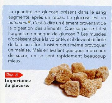 Importance du glucose pour l'organisme.  SVT Bréal 2006 p59.